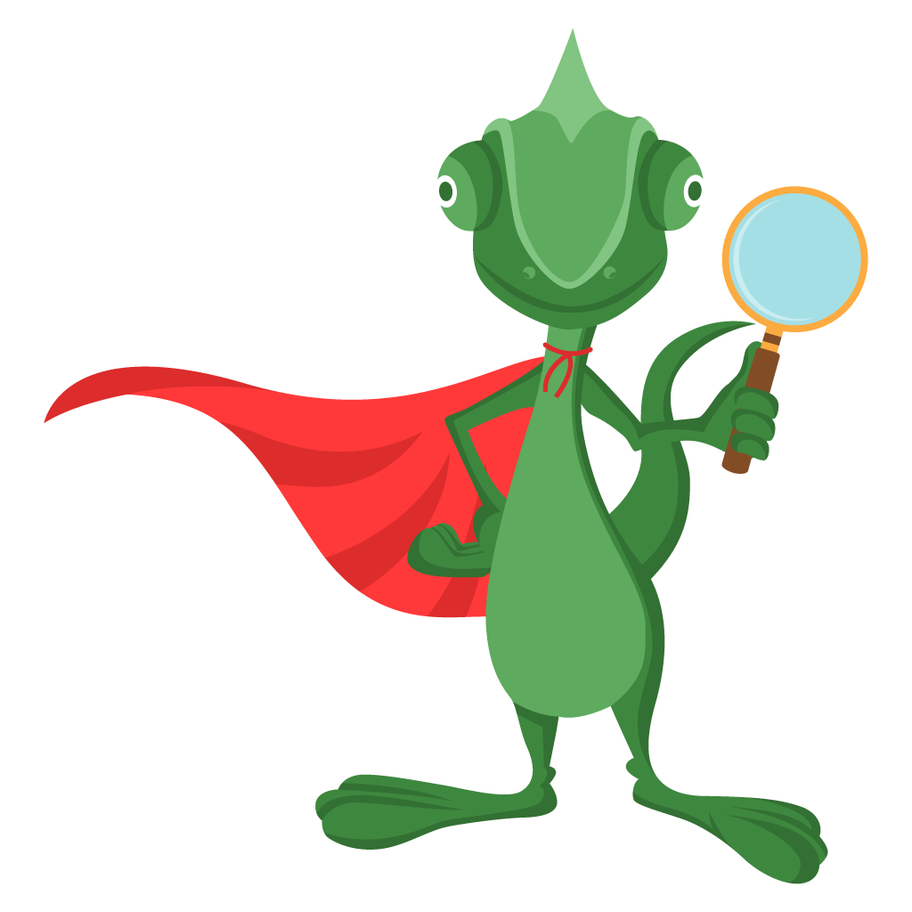 Chameleon Web Services SEO hero