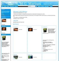 MG Marines