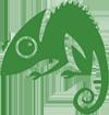 Chameleon Web Services Logo 100