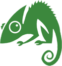 Chameleon Web Services Logo 125