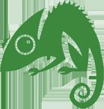 Chameleon Web Services Logo 150