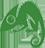 Chameleon Web Services Logo 45