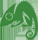 Chameleon Web Services Logo 75