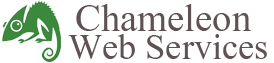 Chameleon Web Design SEO Company