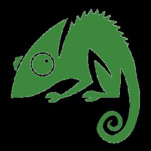 Chameleon map pin shadow3