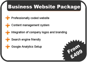 Business Website Costs