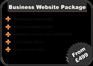 Business Website Costs