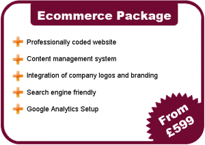 Eccomerce Website Costs