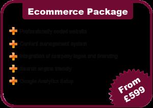 Eccomerce Website Costs