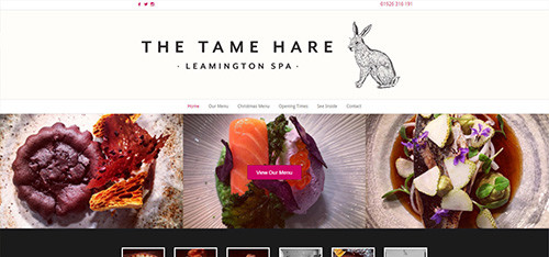 the-tame-hare-web-design-500