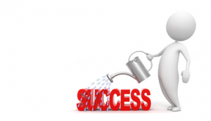 Online Success Using Chameleon Web Services
