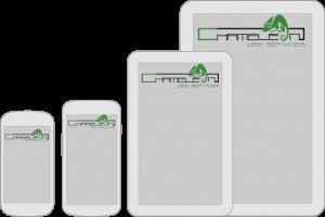 APP Development Company Chameleon Web Services