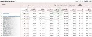 Google Analytics Screen Shot 5