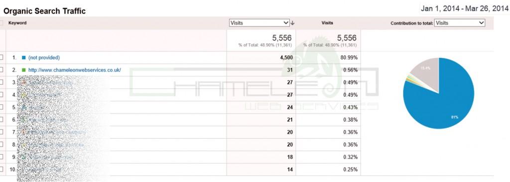 Google Analytics Screen Shot 6