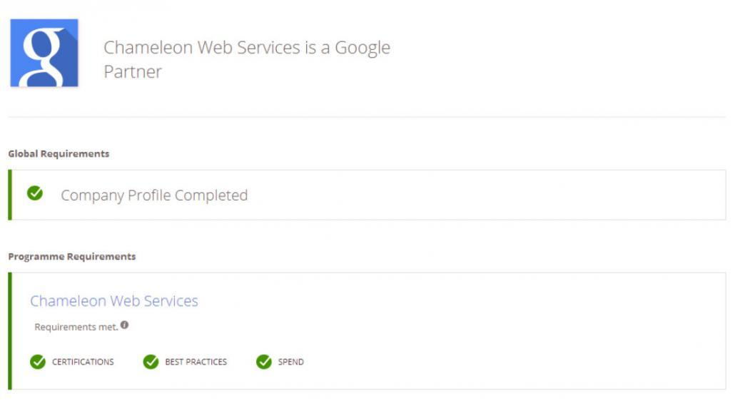Google Partner Chameleon Web Services