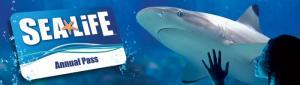 12 months unlimited entry to 12 UK SEA LIFE Centres