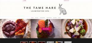 the-tame-hare-web-design