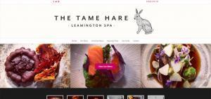 the-tame-hare-web-design
