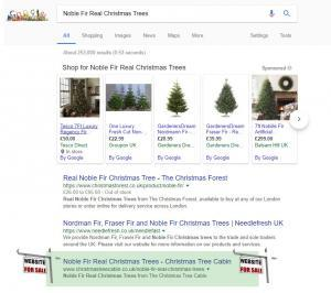 Noble Fir Real Christmas Trees